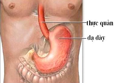 trào ngược dạ dày thực quản và bệnh viêm xoang mũi mãn tính