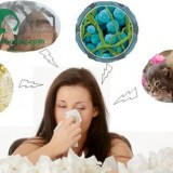 Nguyên nhân gây ra bệnh viêm mũi dị ứng