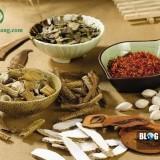Những phương thuốc Đông y trị viêm xoang hiệu quả
