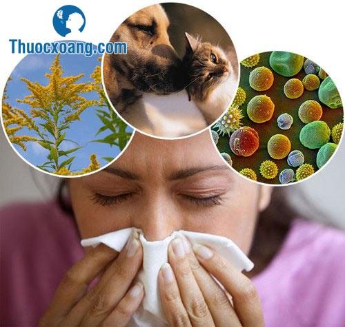 Bệnh viêm xoang gây khó chịu cho bệnh nhân